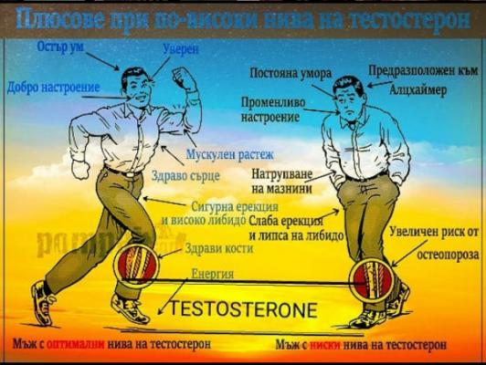 Level In Men